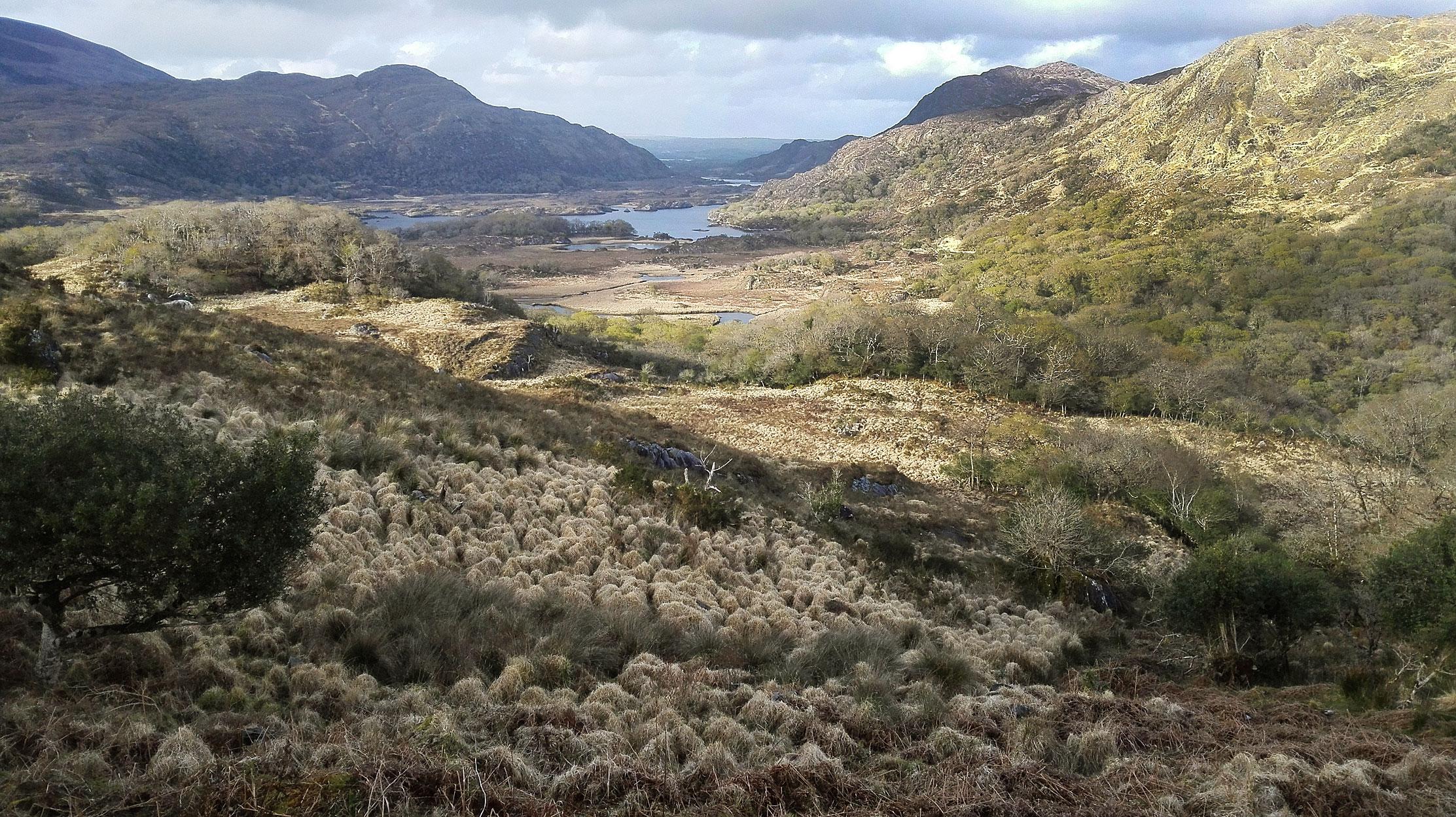 Ireland-landscape2