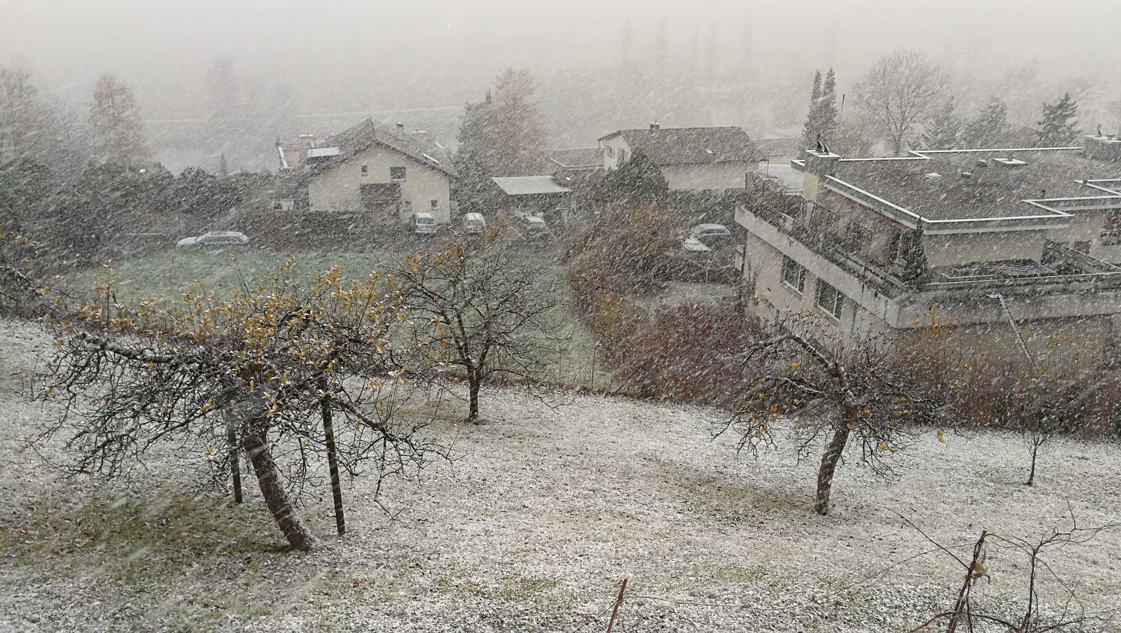 first-snow-zurich-2017.jpg
